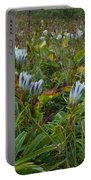 Arctic Gentian Blooming In The Alpine Portable Battery Charger