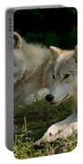 Arctic Wolf Pictures 1268 Portable Battery Charger