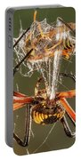 Argiope Spider Wrapping A Hornet Portable Battery Charger