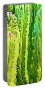 Arizona Cactus #16 Portable Battery Charger