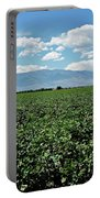 Arizona Cotton Field Portable Battery Charger