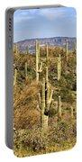 Arizona Desert Portable Battery Charger
