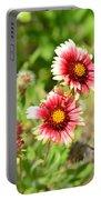 Arizona Sun Blanket Flowers Portable Battery Charger