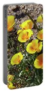 Arizona Wildflowers 2 Portable Battery Charger