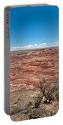 Arizona's Painted Desert Portable Battery Charger
