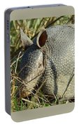 Armadillo By Morning Portable Battery Charger