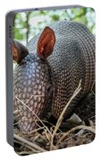 Armadillo In The Woods Portable Battery Charger