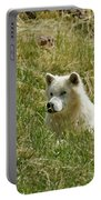 Artic Wolf 2 Dry Brushed Portable Battery Charger