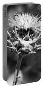 Artichoke Thistle Bw Portable Battery Charger