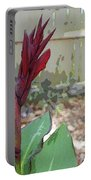 Artistic Red Canna Lily Portable Battery Charger