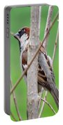 Perching Sparrow Portable Battery Charger