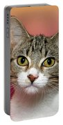 Life Is Better With A Cat Portable Battery Charger