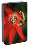 Passiflora Vitifolia Scarlet Red Passion Flower Portable Battery Charger