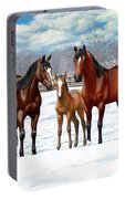 Bay Horses In Winter Pasture Portable Battery Charger