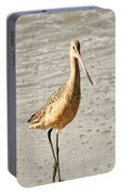 Sandpiper Strolling - Horizontal Portable Battery Charger