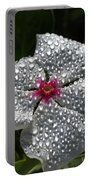 Natures Glitter Portable Battery Charger