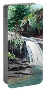Asa Wright Falls      Sold Portable Battery Charger