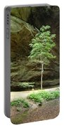 Ash Cave Tree Portable Battery Charger