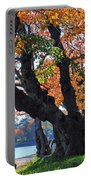 Asian Cherry Trees Of Fall Portable Battery Charger