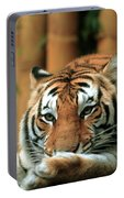 Asian Tiger 5 Portable Battery Charger