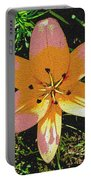 Asiatic Lily With Sandstone Texture Portable Battery Charger