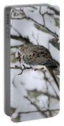 Asleep In The Snow - Mourning Dove Portrait Portable Battery Charger