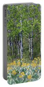 Aspen And Balsam Root Portable Battery Charger