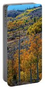 Aspen Cascades In The Sierra Portable Battery Charger