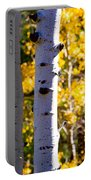 Aspen Color Portable Battery Charger