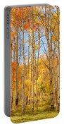 Aspen Fall Foliage Vertical Image Portable Battery Charger