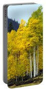 Aspen Fall Portable Battery Charger