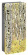 Aspen Forest 2 - Photo Painting Portable Battery Charger