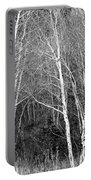 Aspen Forest Black And White Print Portable Battery Charger