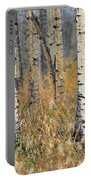 Aspen Forest, Mountain View County Portable Battery Charger