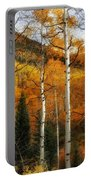 Aspen Glow Portable Battery Charger