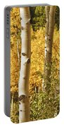 Aspen Gold Portable Battery Charger by James BO  Insogna