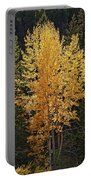 Aspen Gold Portable Battery Charger