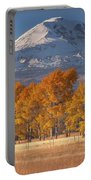 Aspen Grove And Mt Adams Portable Battery Charger