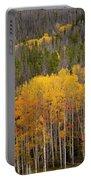 Aspen Grove Portable Battery Charger