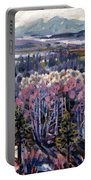Aspen In April Portable Battery Charger