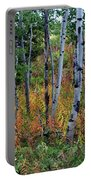 Aspen In Fall Portable Battery Charger