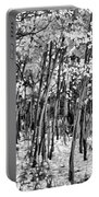 Aspen In Snow Black And White Portable Battery Charger