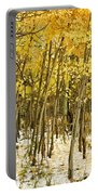Aspen In Snow Portable Battery Charger