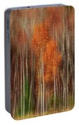 Aspen Motion II, Sturgeon Bay Portable Battery Charger