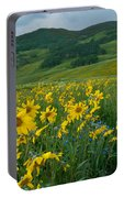 Aspen Sunflower And Mountain Landscape Portable Battery Charger