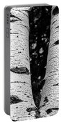 Aspen Tree Art Portable Battery Charger