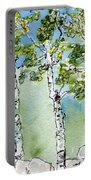 Aspen Trio Portable Battery Charger