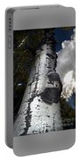 Aspens And A Cool Breeze Portable Battery Charger