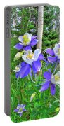 Aspens And Columbines Portable Battery Charger