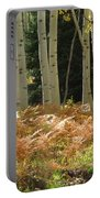 Aspens And Ferns Portable Battery Charger